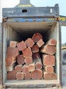 张家港创都木业墨西哥红檀香